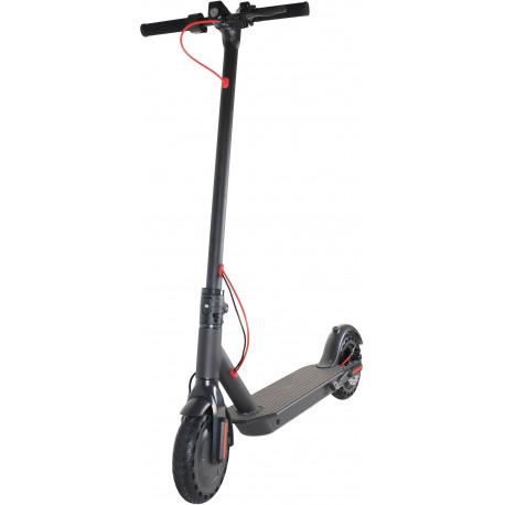 Trottinette électrique MP MAN TR 400